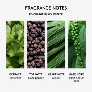 Re-charge Black Pepper Fine Liquid Hand Wash 300ml
