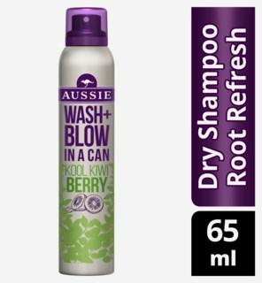 Wash + Blow Kool Kiwi Berry Dry Shampoo 65ml