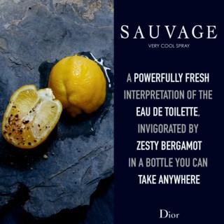 Sauvage Very Cool Spray 100ml