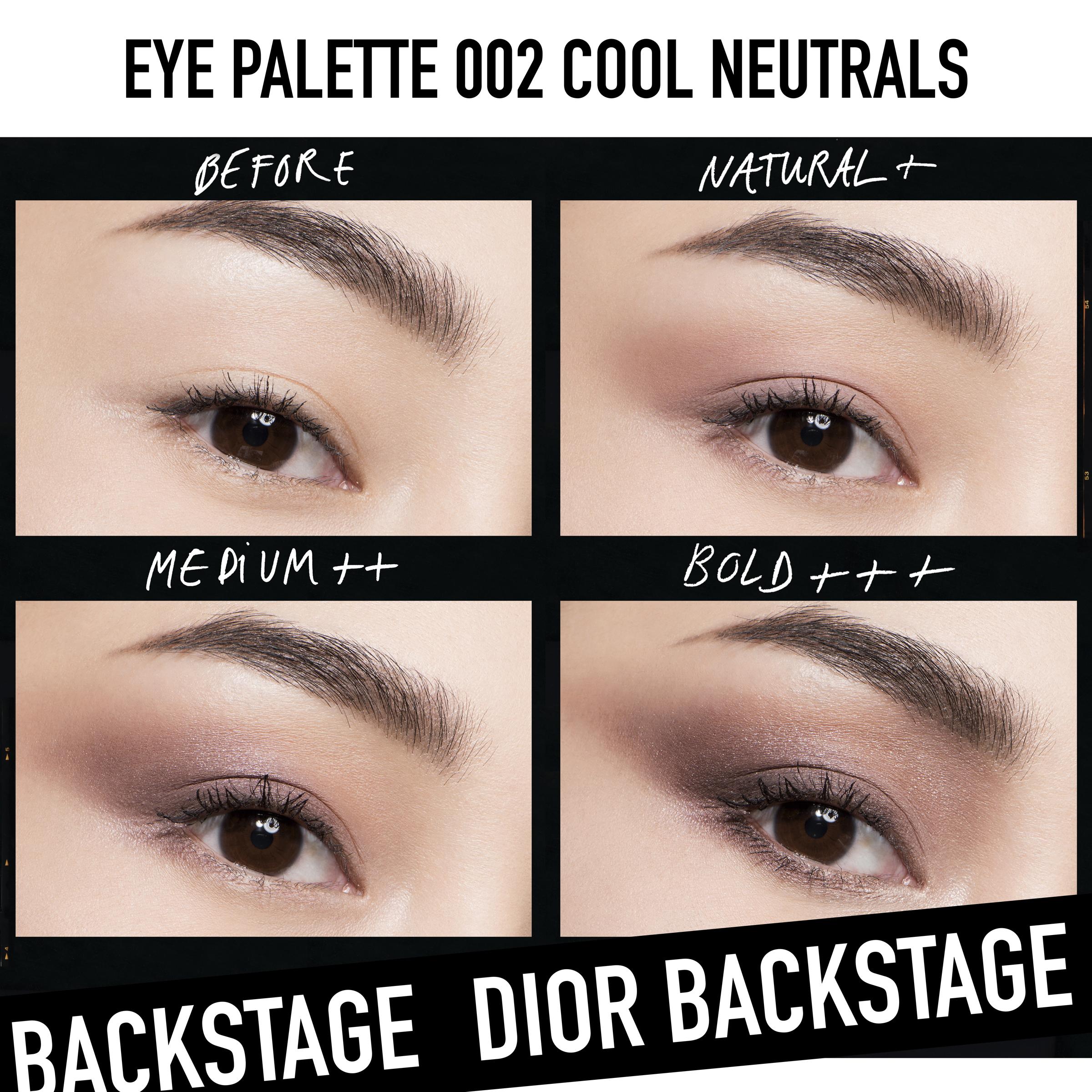 Backstage Eye Palette 002Cool