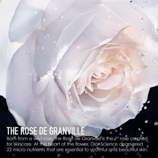 Prestige Le Micro-Sérum De Rose Yeux