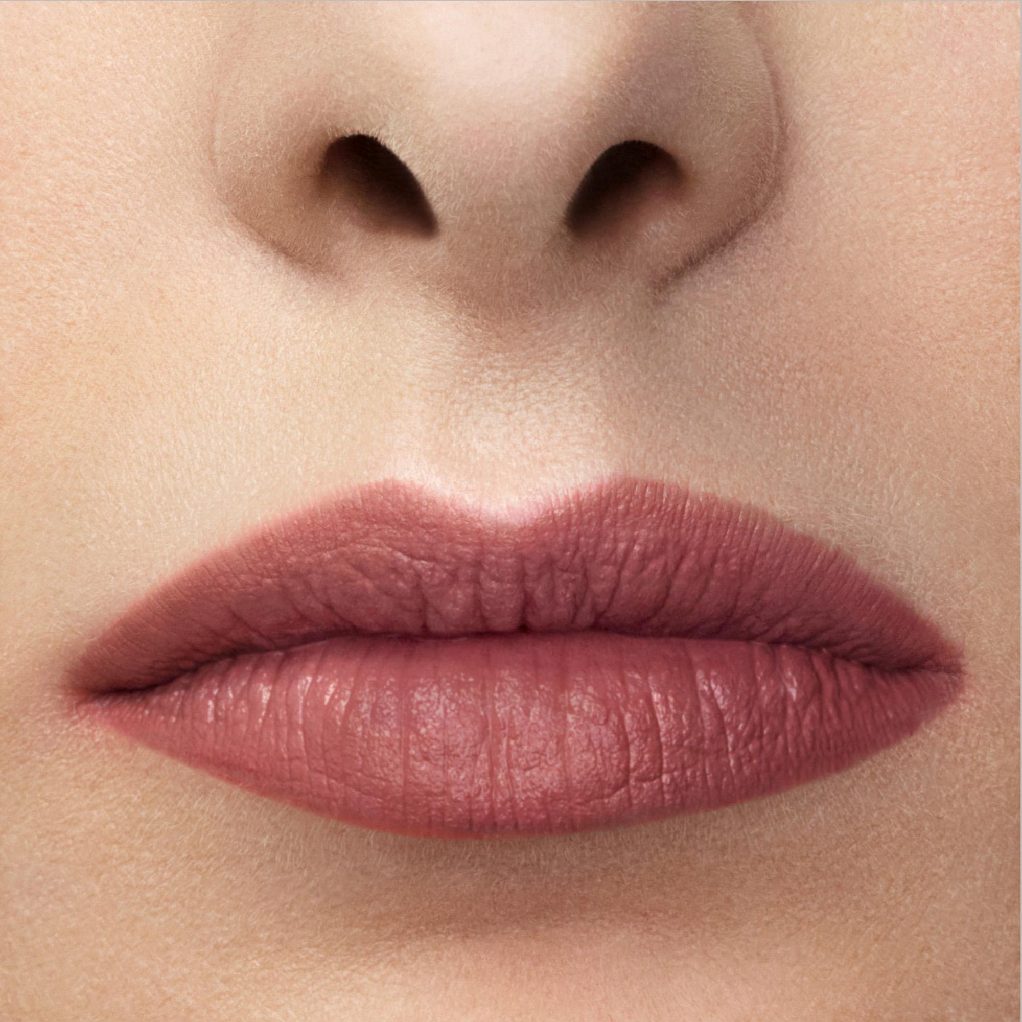 Lip Maestro 501