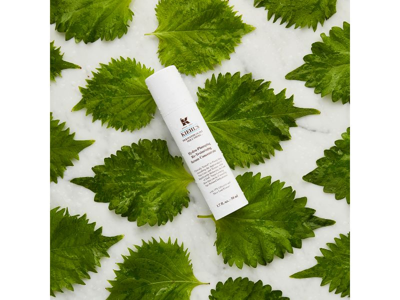 Hydro-Plumping Re-Texturizing Concentrate Face Serum