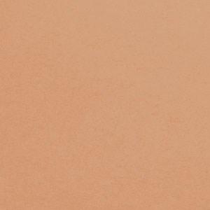 Teint Idole Ultra Compact Powder 03 Beige Diaphane