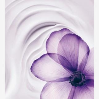 Renergie Multi-Lift Ultra Day Cream 50ml