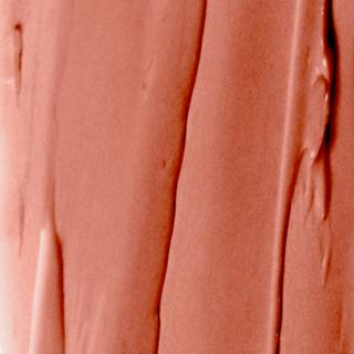 Baume de Rose Nutri-Coleur Lipcare 6 Toffee Cream