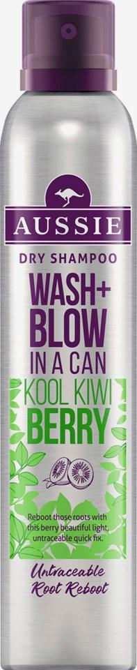 Wash + Blow Kool Kiwi Berry Dry Shampoo 180ml