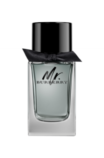 Mr Burberry EdT 100 ml