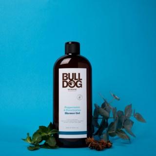 Peppermint & Eucalyptus Shower Gel 500ml