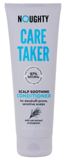 Care Taker Conditioner 250 ml