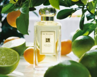 Lime Basil & Mandarin Cologne 100 ml