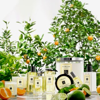 Lime Basil & Mandarin Bath Oil 30ml