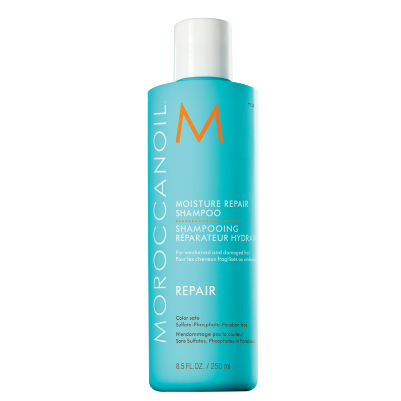 Moist Repair Shampoo 250 ml