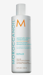 Moisture Repair Conditioner 250 ml
