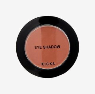 Single Eyeshadow Conspiracy Matte shade