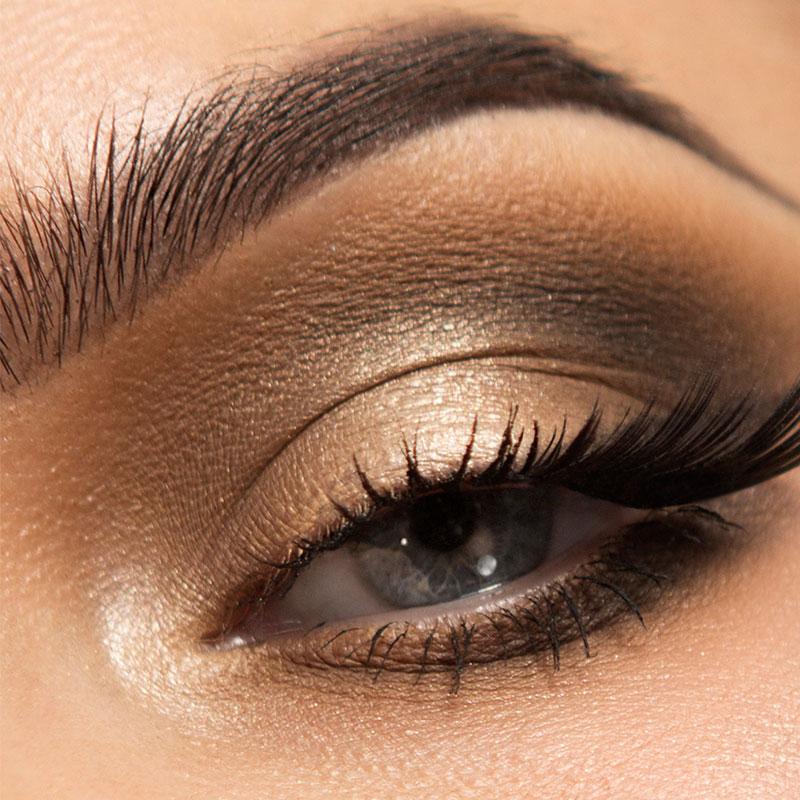 Eye Kit Makeup Brushes