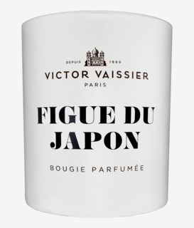 Figue Du Japon Scented Candle White