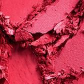 Powder Blush Pro Palette Never Say Never