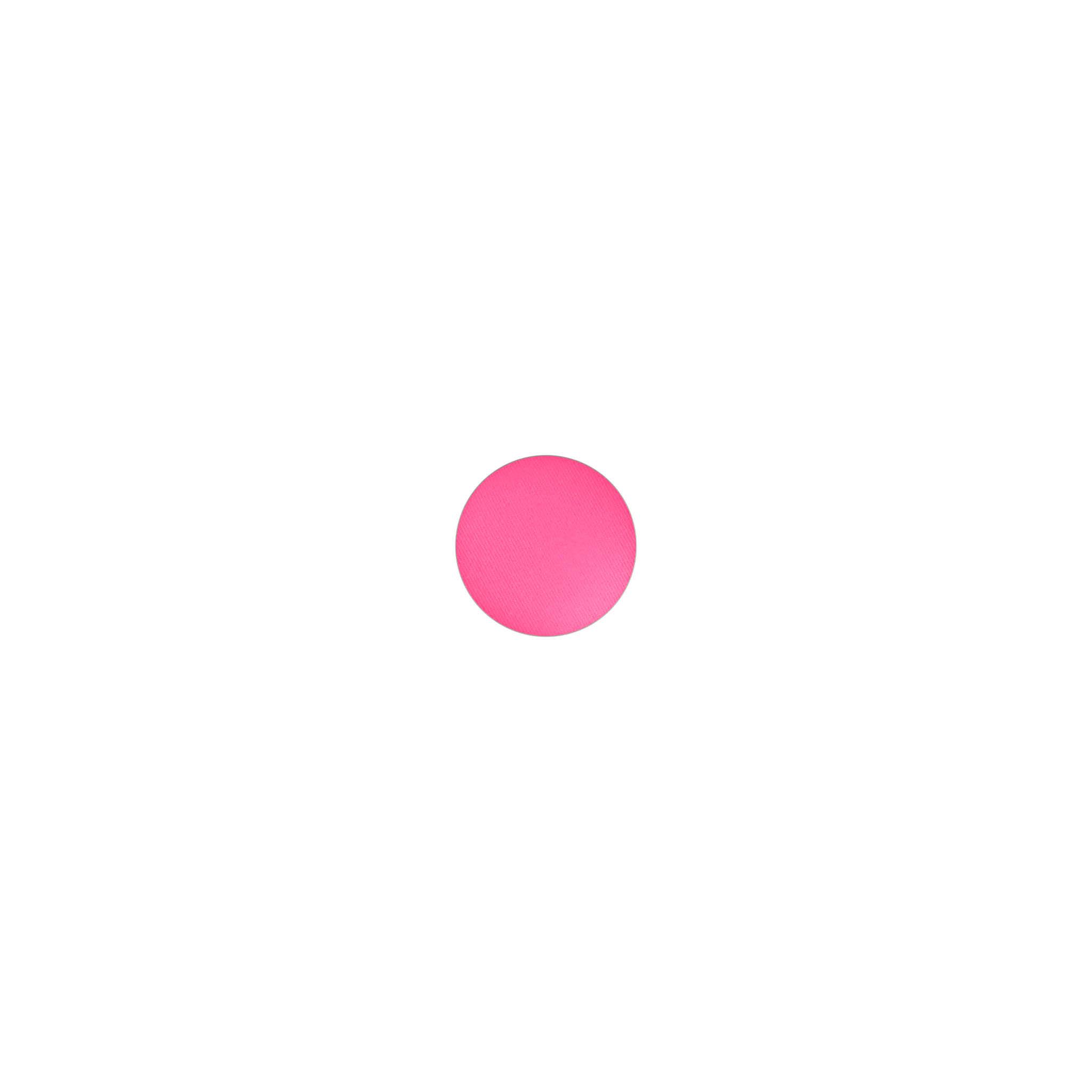 Powder Blush Pro Palette Bright Pink