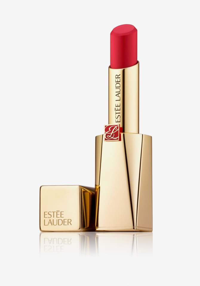 Pure Color Desire Matte Plus Lipstick 12 301Outsmart